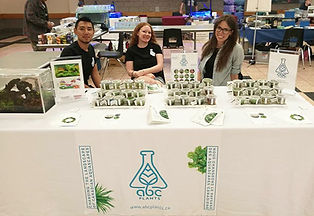ABC Plants team