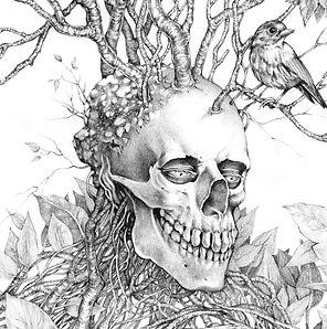 Curtis_Stephanie_SkeletonBirds.jpg