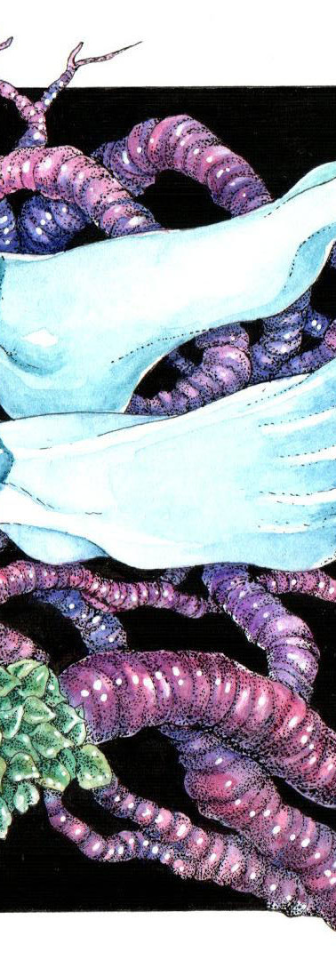 Severed Limbs and Gut-Roots