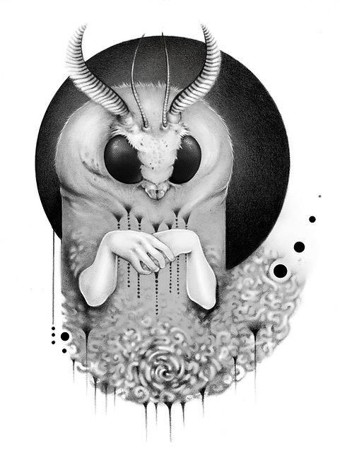 8.5x11 Print - Mothweaver