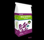 NewBag_Marathon_SPORT_wl 12-4-6.png