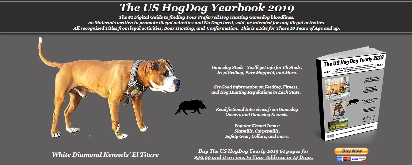 The 2019 US HogDog Yearly | Gamedog Studs