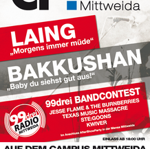 Campusfestival 2013 - Hochschule Mittweida