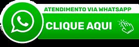 Transportadora de Veículos Cegonha em Passo Fundo RS