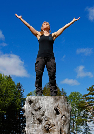 Karin Larsson Brolund (17).jpg
