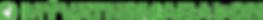 logo - stórt nafn, litið icon.png