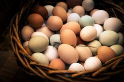 Beatuiful Heritage Eggs.