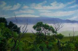 Mauna Kea from Waiakamali,17x11,$400