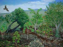 Kīpuka ʻOweʻowe, 12x9, $325