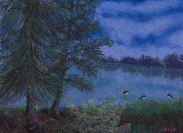 Aeʻo In The Moonlight, 12x9, $325