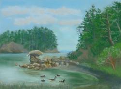 Sucia Cove,12x9, $300