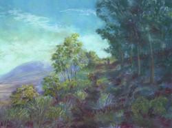 Hualalai Morning Walk, 14x11, sold