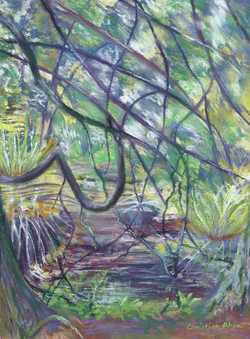 Stimson backwaters, 9x12, $325