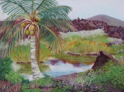 Niu by the Pool, Pōhue, $375