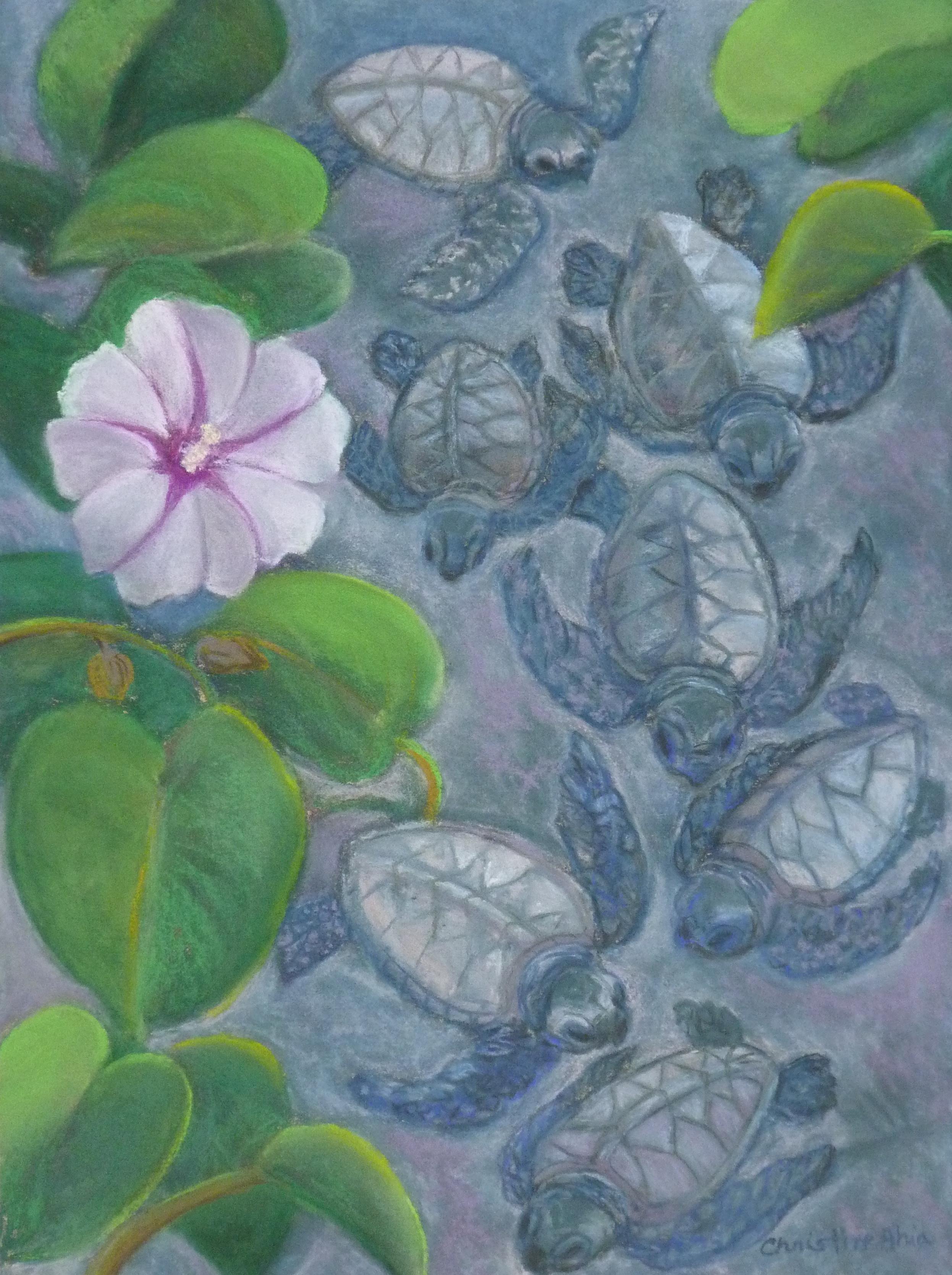 Pōhue, kuʻu one hanau, 9x12, $300