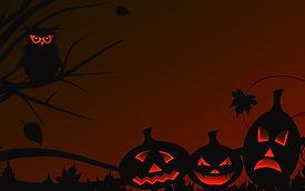 owl-jack-o-lanterns.jpg