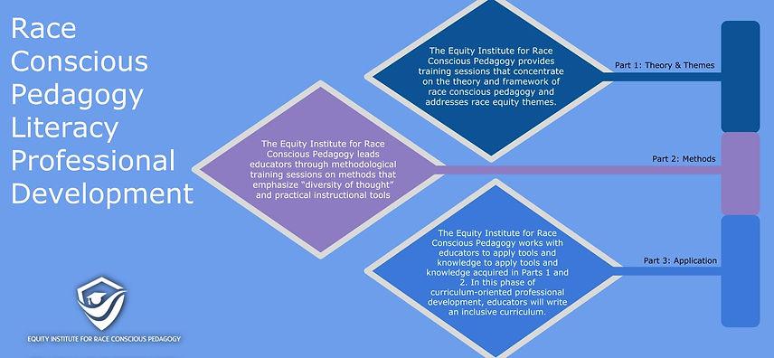 Race Conscious Pedagogy Literacy Profess