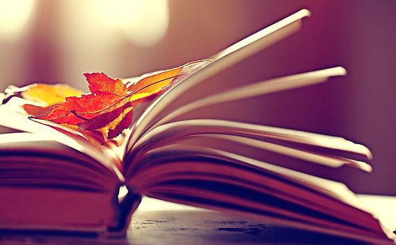 Fall book sale3.jpg