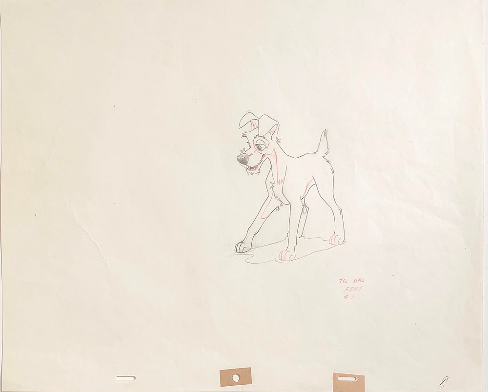 """Original Production Animation Drawing of Tramp from """"Lady and the Tramp,"""" 1955"""
