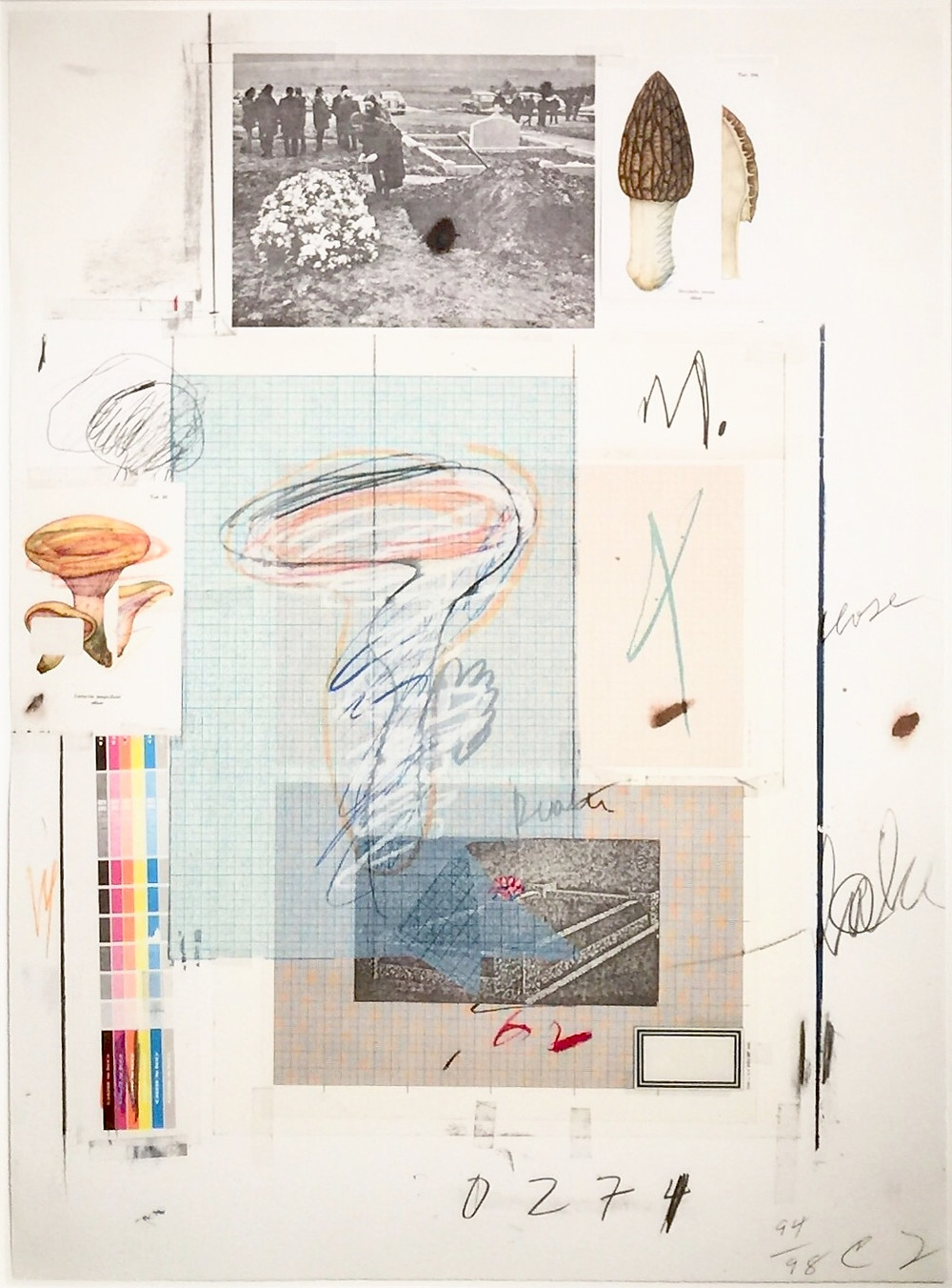"""Natural History Part I Mushrooms: No. VII, 1974; Lithograph, collotype in colors, collage, and hand-coloring on Rives Couronne paper; Numbered 94/98 and initialed C T in pencil lower right; Printer, © 1974, and VII stamps lower left; Published by Propyläen Verlag, Berlin; Catalog Raisonne: Bastian 48; Size - Sheet 30 x 22"""", Frame 38 x 30""""; Framed floated with an acid free mat, cream wood exterior frame, and plexiglass."""