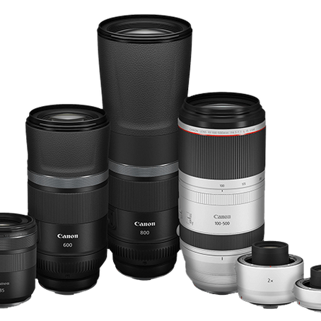 Canon RF100-500mm F4.5-7.1 L IS USM, RF600mm and 800mm F11 IS STM, Canon RF85mm F2 MACRO IS STM