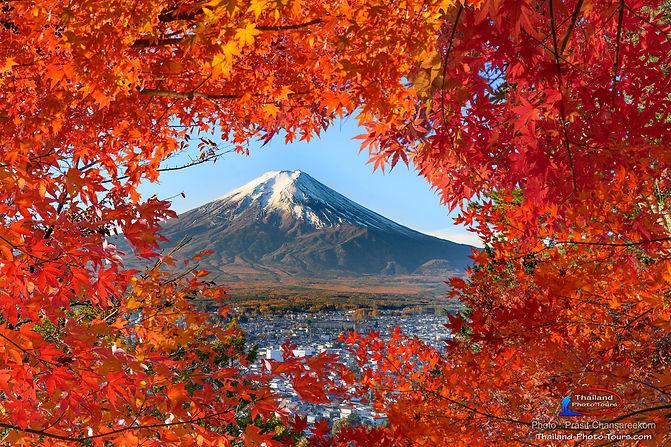 Mt fuji autumn.jpg