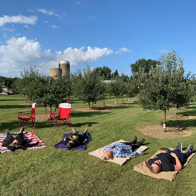Reiki in an Apple Orchard 9/25
