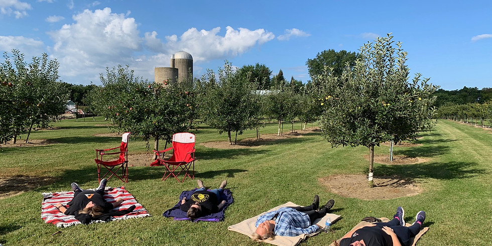 Reiki in an Apple Orchard 9/26 - Sold Out