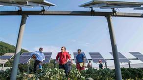 Quanto custa um painel de energia solar?