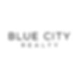 adj5-bluecity.png