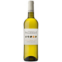 Vin blanc 2.jpg