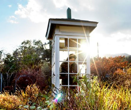 A white, glass sided booth in a meadow setting, a woman in a dark coat is inside with her head bowed. Bright sun refects off a corner of the phone booth.