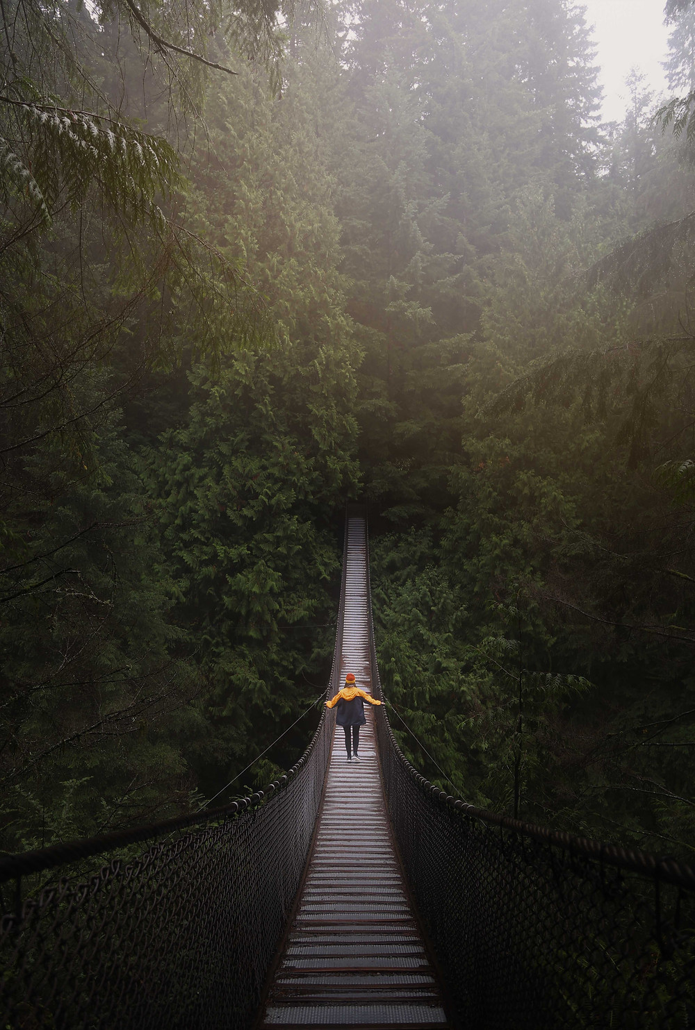 A person in yellow coat crosses suspended wooden footbridge through wet piney forest