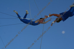 Flying Trapeze - Circus of the Kids