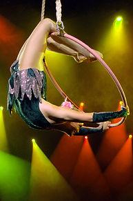 Lisa Truscott - Aerial Hoop