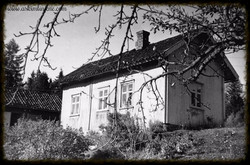 """Fjellengen"" Slitu 1952"
