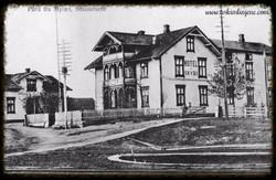 Parti fra Mysen ca 1910