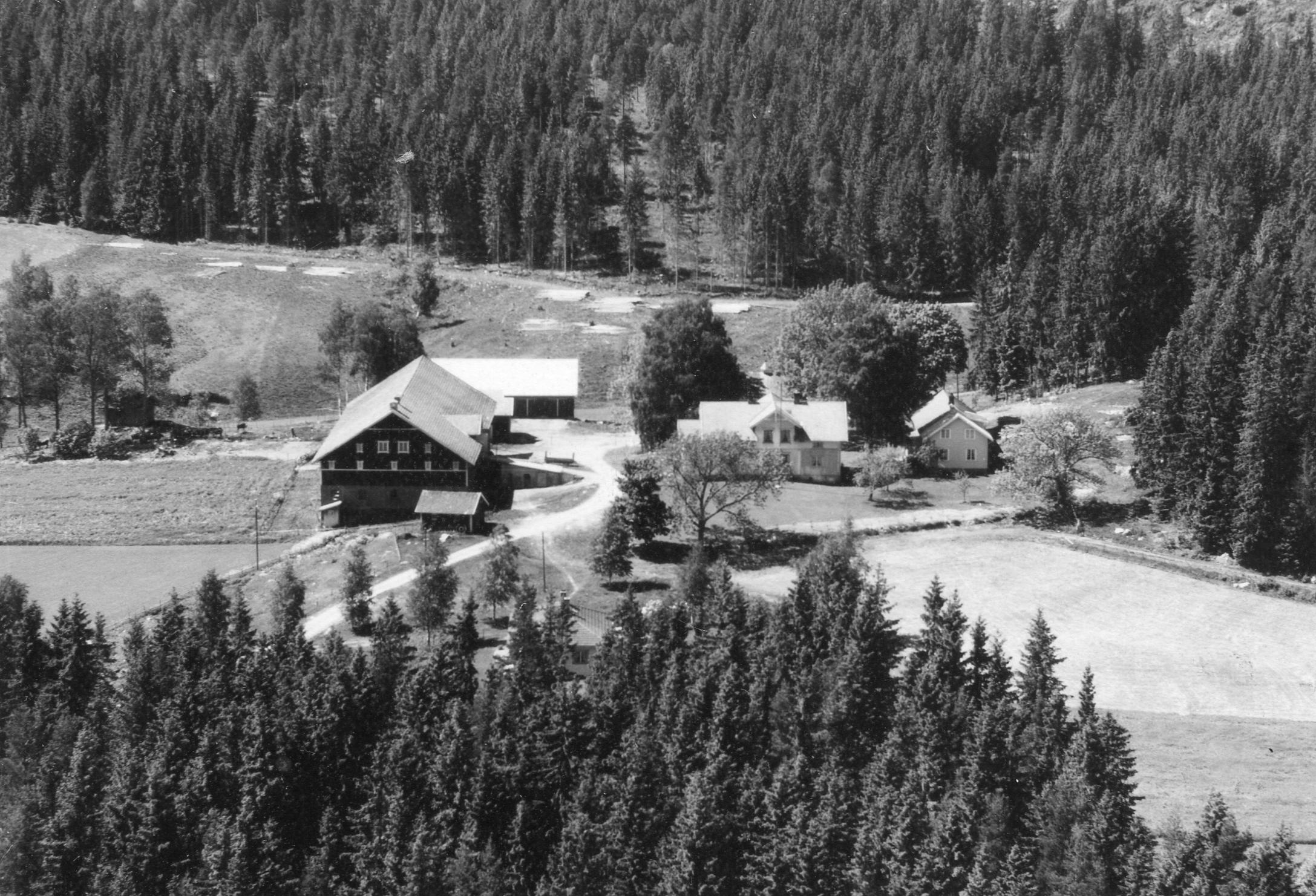 Holene/Holmstvedt ca 1960