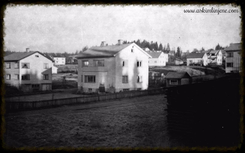 """Motiv sett fra """"Skogtun"""" 1953"""