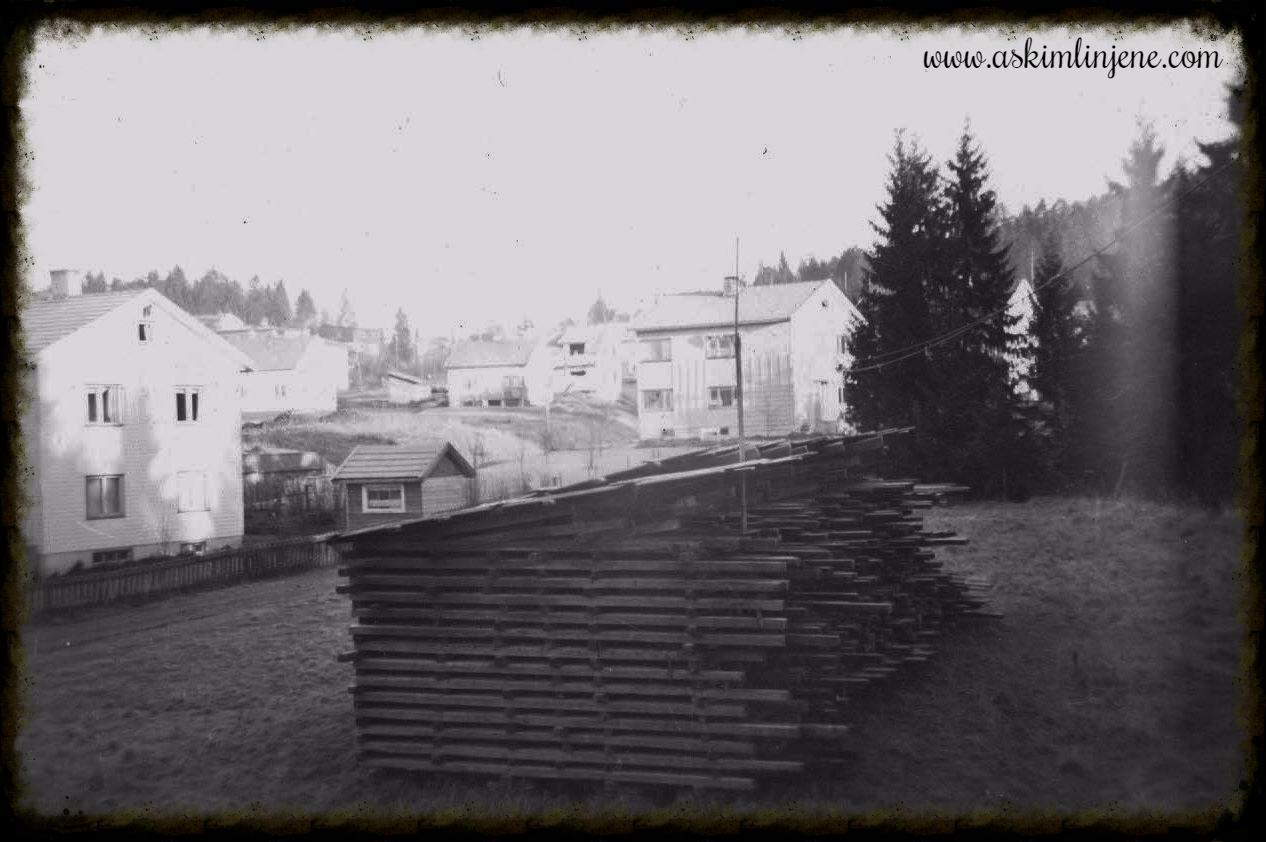 """Utsikt fra """"Skogtun"""" 1953"""