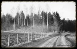 Den store haugen Brennemoen 1953