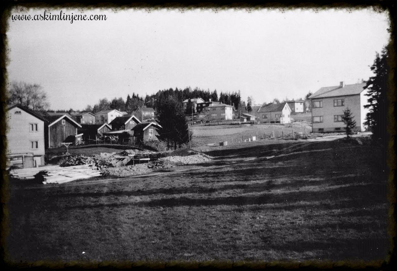 """Utsikt fra """"Skogtun"""" 1949"""