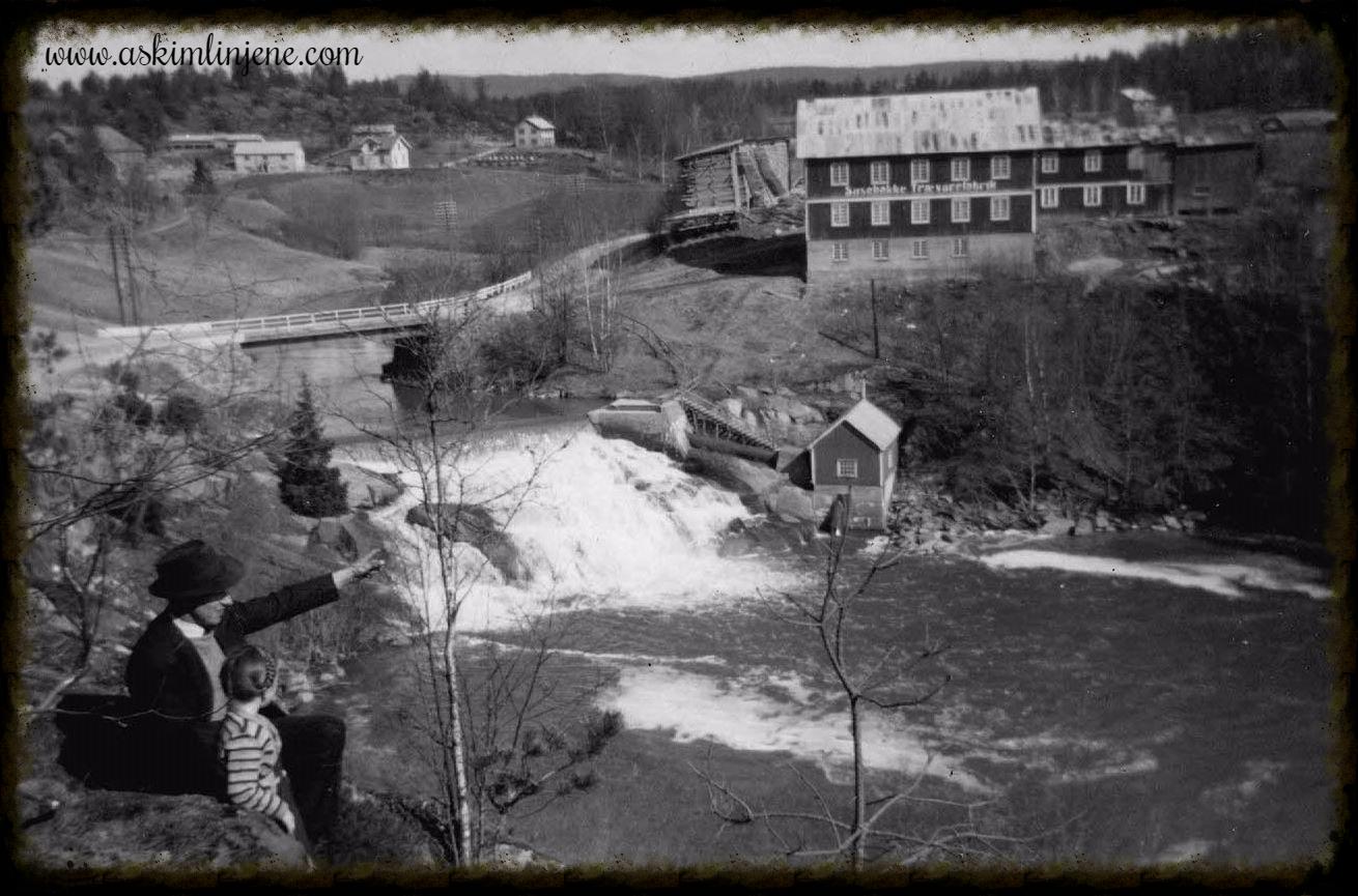 Susebakke 1950