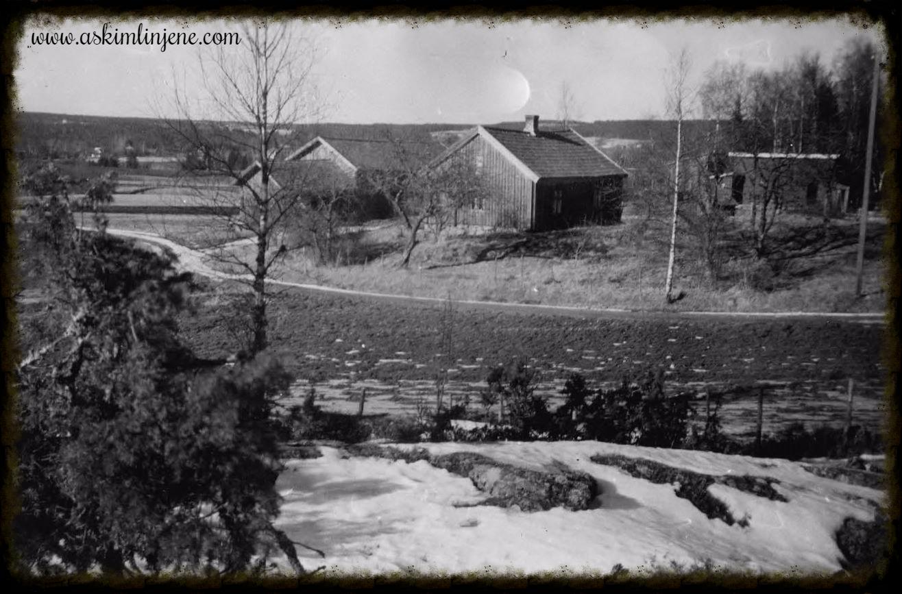 Burås sett fra Aasen 1953