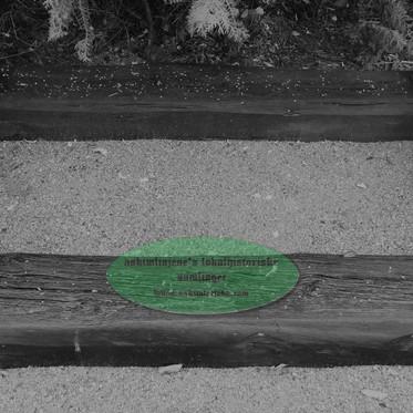 Skinner fra Solbergfossbanen