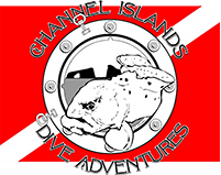 Channel Island Dive Adventures