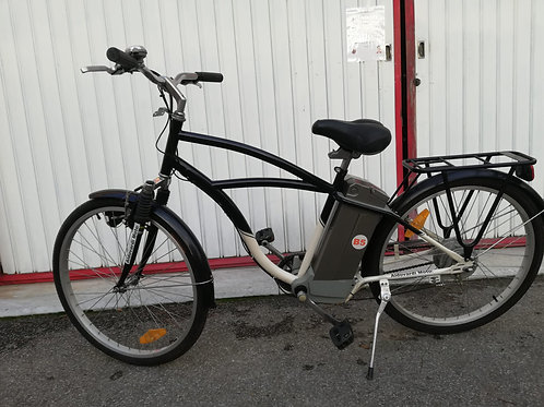 Bicicletta a Pedala assistita E-Bike