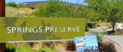 Springs Preserve.JPG