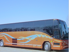 T & D CHARTER BUS.png