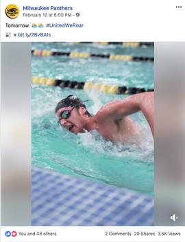 Swim/Dive Hype